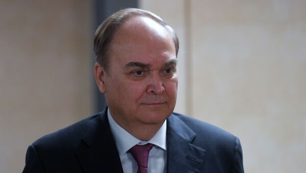 Ambassador Extraordinary and Plenipotentiary of the Russian Federation to the United States of America Anatoly Antonov during a briefing at the State Duma of the Russian Federation in Moscow. - Sputnik International