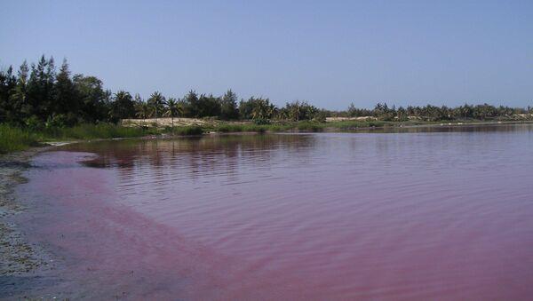 Pink lake - Sputnik International