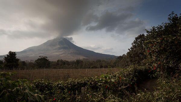 A field in the background of the Mount Sinabung Eruption. Medan, Indonesia, 29 Jan 2014 - Sputnik International
