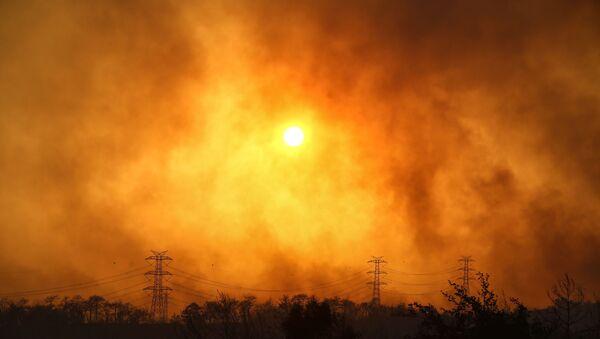 Plumes of black smoke rise from the forest around Manavgat, Turkey - Sputnik International
