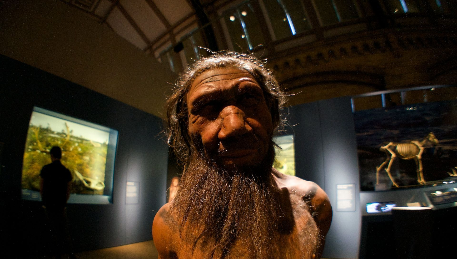 Neanderthal. Britain: One Million Years of the Human Story at the Natural History Museum - Sputnik International, 1920, 30.07.2021