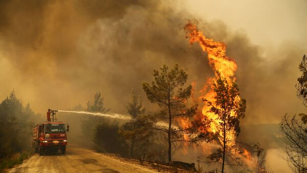 A firefighter extinguishes a forest fire near the town of Manavgat, east of the resort city of Antalya, Turkey, July 30, 2021. REUTERS/Kaan Soyturk - Sputnik International