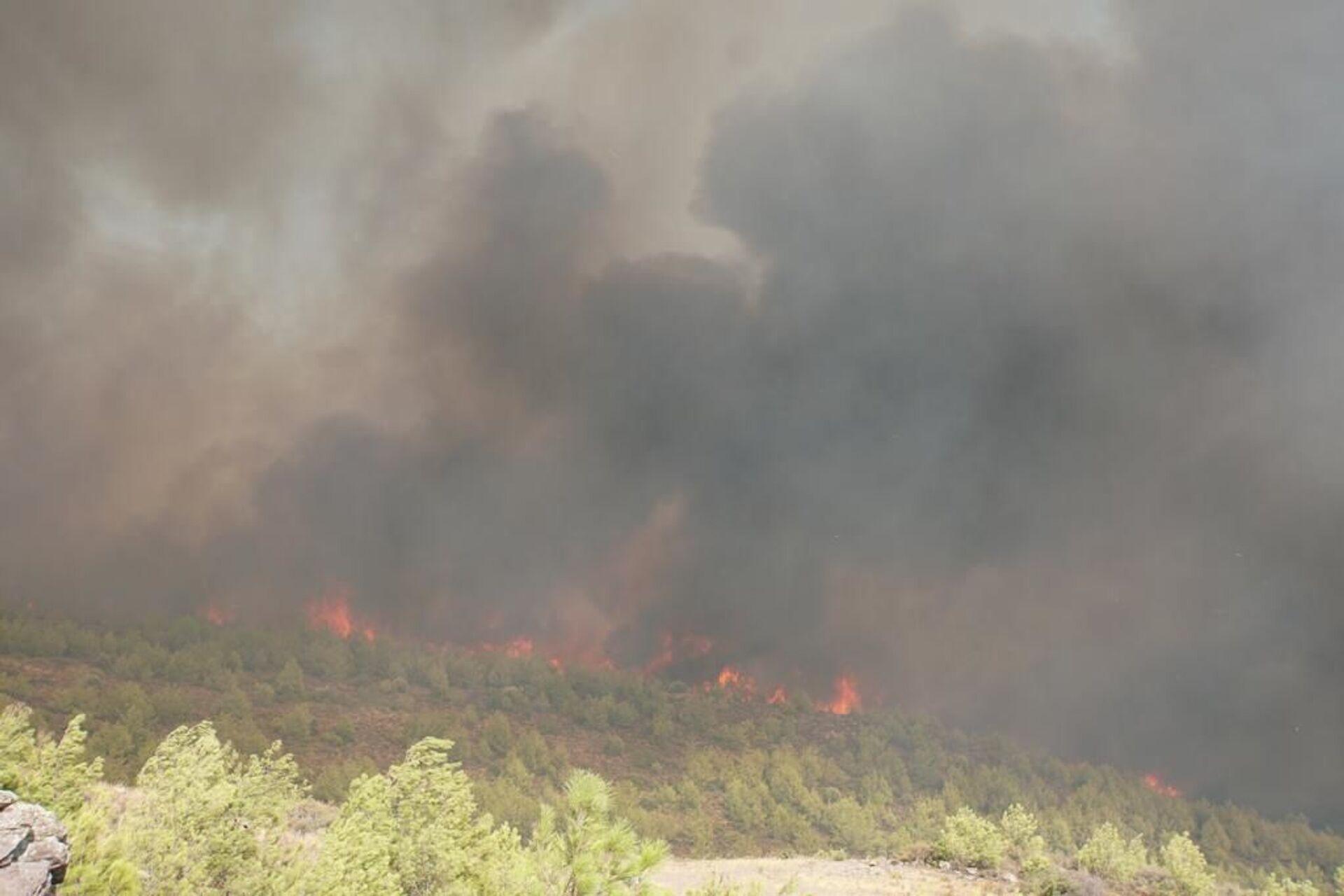 wildfires in the Turkish city of Bodrum - Sputnik International, 1920, 07.09.2021