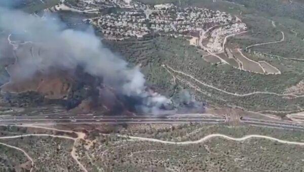 Wildfires near Jerusalem - Sputnik International