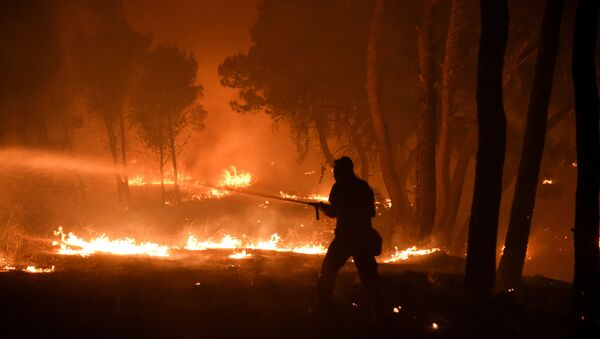 A firefighter battles a wildfire burning in the suburb of Thrakomakedones, north of Athens, Greece, on 7 August 2021. - Sputnik International