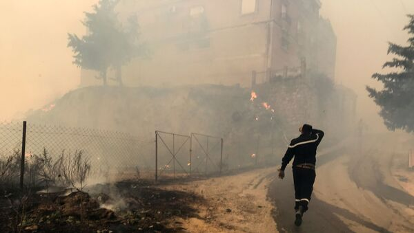 A civil protection rescue worker walks near smoke rising from a forest fire in the mountainous Tizi Ouzou province, east of Algiers, Algeria August 10, 2021. - Sputnik International