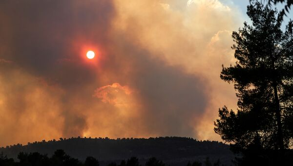 The sun can be seen behind smoke over the mountains, caused by wildfire as firefighting planes and firefighters try to gain control over it in Givat Yearim, on the outskirts of Jerusalem August 15, 2021. - Sputnik International