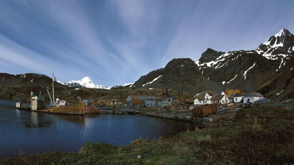 Grytviken at South Georgia and South Sandwich Islands, whaling station in 1989 - Sputnik International