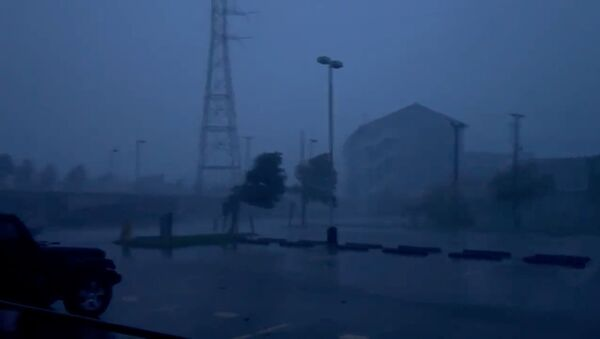Trees sway amidst heavy rain during Hurricane Ida, which made landfall as a fierce Category 4 storm, in Bywater, New Orleans, Louisiana, U.S. August 29, 2021, in this still image taken from video provided on social media. - Sputnik International