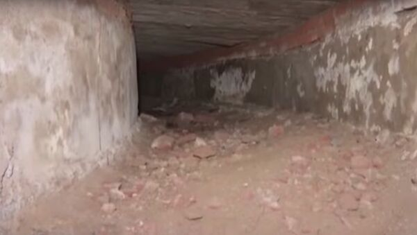 Secret tunnel to Red Fort used by British unearthed inside Delhi Assembly - Sputnik International