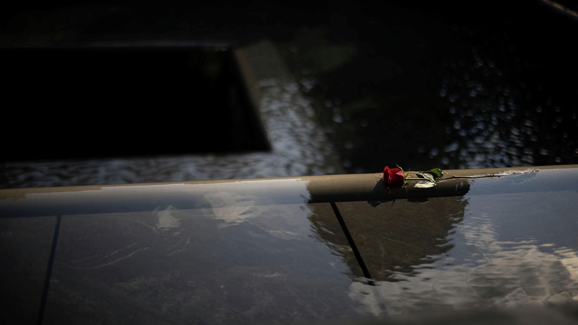 A rose is seen at the 9/11 Memorial on the day marking the 20th anniversary of the September 11, 2001 attacks in New York City, New York, U.S., September 11, 2021. - Sputnik International, 1920, 18.09.2021