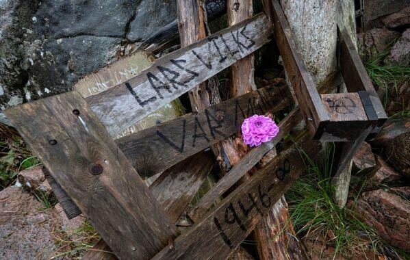 "A flower on Vilk's wooden artwork ""Nimis.""  - Sputnik International"