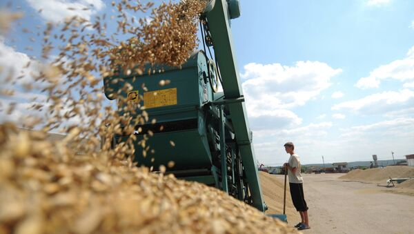Russian agricultural workers will soon strengthen their positions in domestic market, and also strengthen their international competitive position - Sputnik International