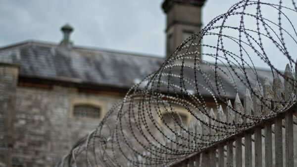 Young offenders in solitary confinement in UK prison - Sputnik International
