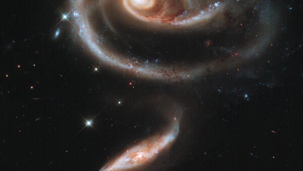 A rose made of galaxies - Sputnik International