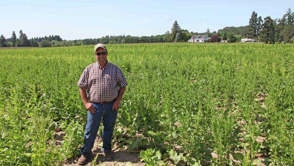 Food and Farm GMO Crop Mapping - Sputnik International