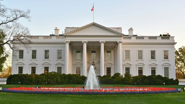 Many Americans regard the White House as the lair of a powerful being who can snap his fingers and make things happen. - Sputnik International
