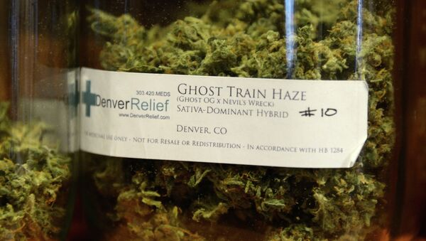 """Denver Relief patients can choose from a range of different marijuana strains with colorful names like """"Ghost Train Haze."""" - Sputnik International"""