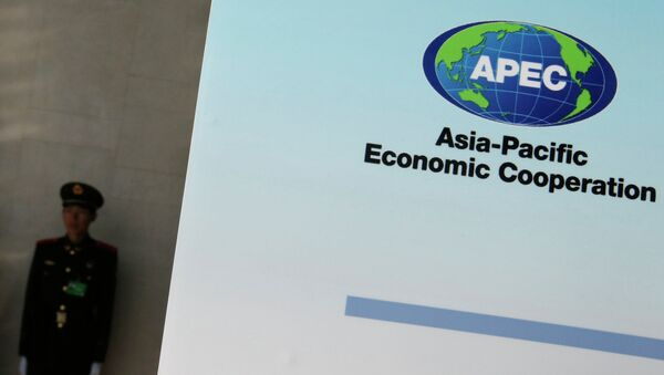A paramilitary policeman stands guard next to a banner bearing a logo of APEC during the opening of the 2014 APEC Concluding Senior Officials' Meeting, at the China National Convention Centre, in Beijing, November 5, 2014. - Sputnik International