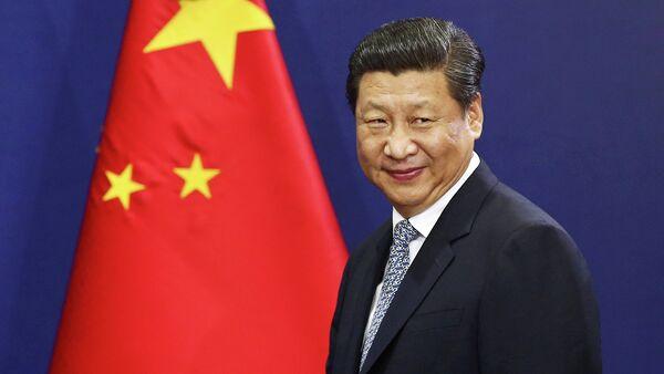APEC summit could host 'hallmark' Abe-Xi meeting: expert - Sputnik International