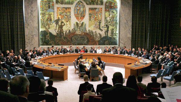 UN Security Council session - Sputnik International