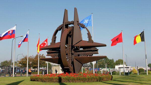 Ukraine's coalition government agreement to include NATO provision: adviser - Sputnik International