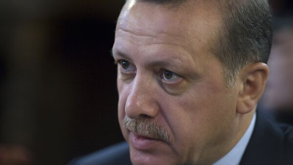 Turkish President Recep Tayyip Erdogan - Sputnik International