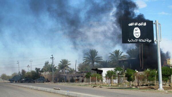 Islamic State flag - Sputnik International