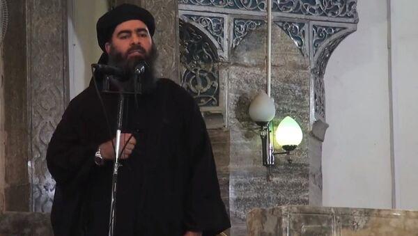 Leader of the militant Islamic State Abu Bakr al-Baghdadi. (File) - Sputnik International