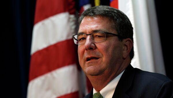 U.S. Deputy Secretary of Defense Ashton Carter - Sputnik International