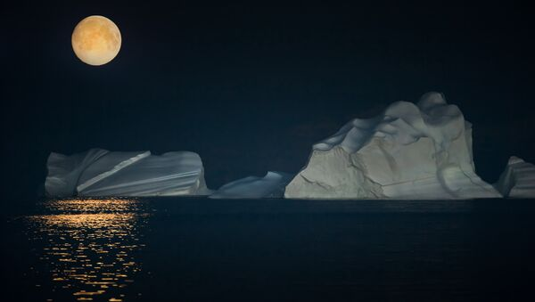 Night at the Arctic - Sputnik International