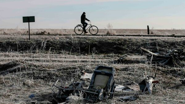 A man rides his bicycle past the wreckage of MH17, a Malaysia Airlines Boeing 777 plane - Sputnik International