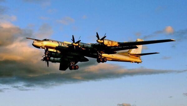 Tu-95MS strategic bomber - Sputnik International