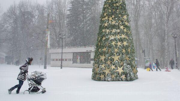 Snowfall in Moscow - Sputnik International