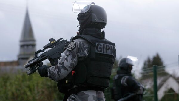 Members of the French GIPN intervention police forces - Sputnik International