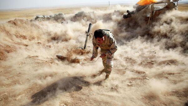 A Kurdish Peshmerga fighter - Sputnik International