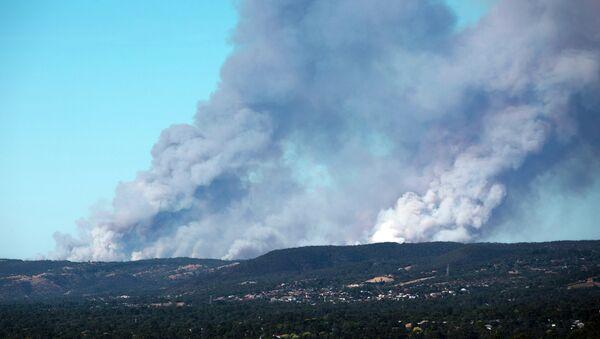 Fire in the Adelaide Hills in South Australia - Sputnik International