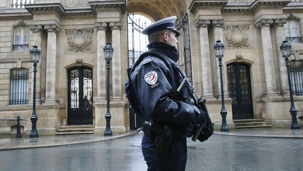 A police officer is in faction in front of the Elysee Palace in Paris - Sputnik International