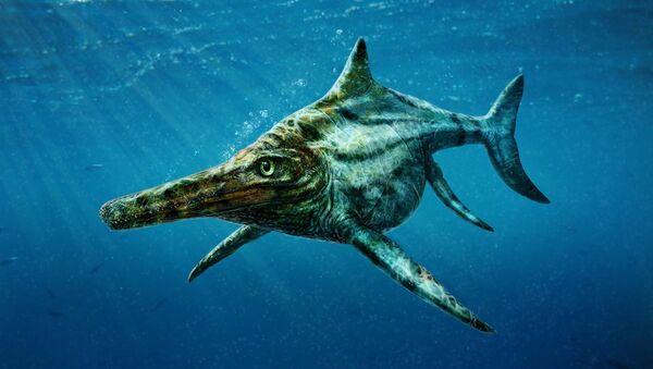 Dearcmhara shawcrossi historic reptile - Sputnik International