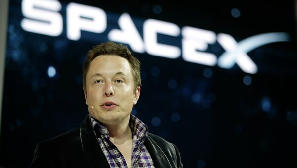 Elon Musk, CEO and CTO of SpaceX - Sputnik International