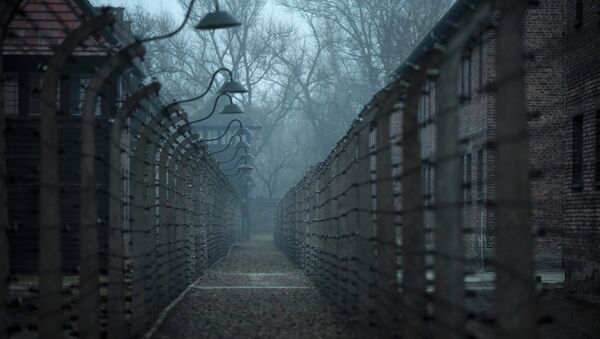 A general view of the former German Nazi concentration and extermination camp Auschwitz in Oswiecim - Sputnik International