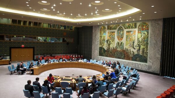 An ongoing United Nations Security Council meeting convenes at the UN headquarters Monday, Jan 19, 2015 - Sputnik International