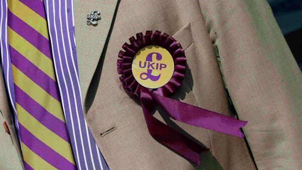 A supporter is seen wearing a United Kingdom Independence Party (UKIP) badge - Sputnik International