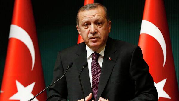 Turkey's President Tayyip Erdogan addresses the media at the Presidential Palace in Ankara - Sputnik International