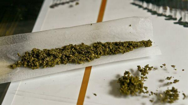 Obama Budget Allows for Pot Legalization in Washington DC - Sputnik International
