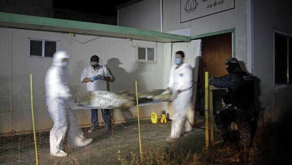 Forensic workers - Sputnik International