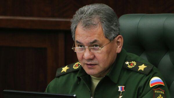 Russia's Defense Minister Sergei Shoigu - Sputnik International