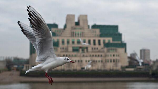 Gull flying past the SIS (MI6) building in Vauxhall - Sputnik International