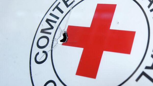 A bullet hole is seen on a sign, on a Red Cross office after shelling, in the town of Donetsk, eastern Ukraine - Sputnik International
