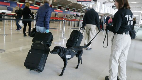 A Transportation Security Administration inspector and dog check out passengers at the Detroit Metropolitan Airport. - Sputnik International